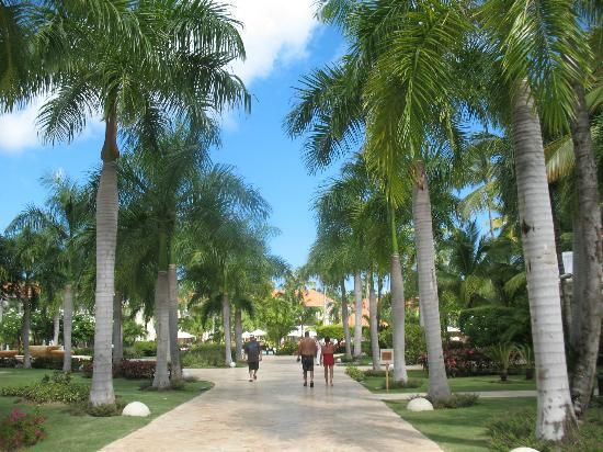 Dreams Palm Beach Punta Cana: walkway