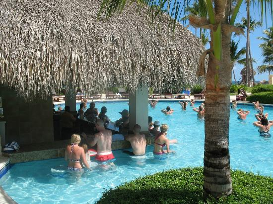 Dreams Palm Beach Punta Cana: pool bar