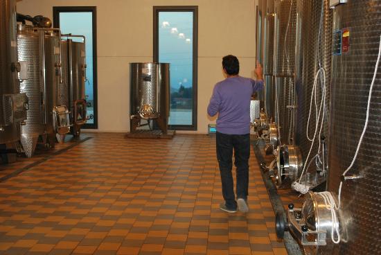 Agriturismo Bevione: Wineri