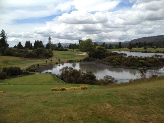 Rotorua Golf Club - Arikikapakapa Course: View from one of the stunning par 3's on the course