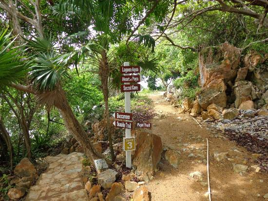 Paya Bay Resort: Paths to beach areas