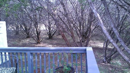 Cypress Creek Cottages: View from the porch