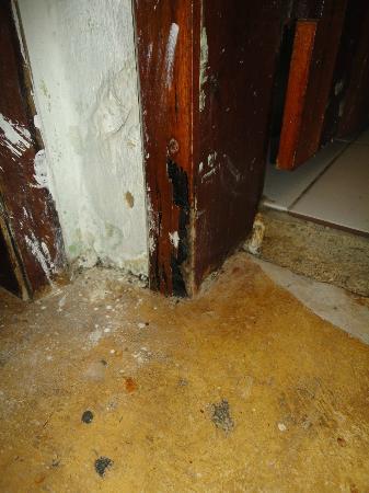 Marina Barro Preto Hotel: Cupins comem toda a madeira