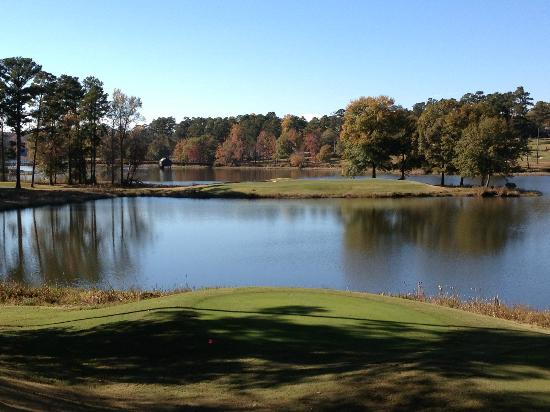 Alabama: 15th Hole, Par 3 - Not for the faint at heart from the tips!