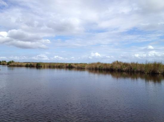 Capt Mitch's - Everglades Private Airboat Tours: So beautiful