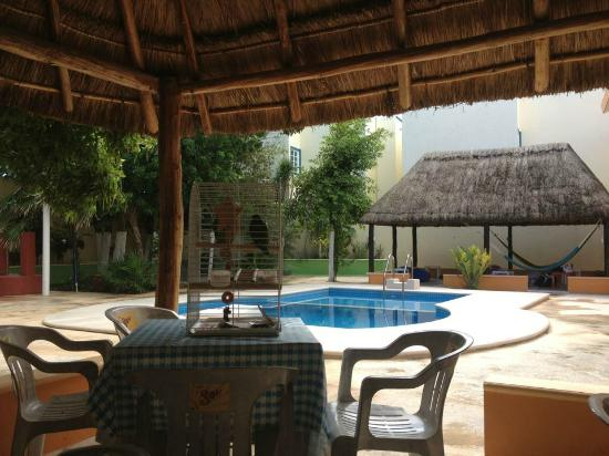 Hacienda del Sol: Outside view from dining area
