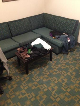 Holiday Inn Express Hotel & Suites Brentwood North-Nashville Area: frat house couch room 202