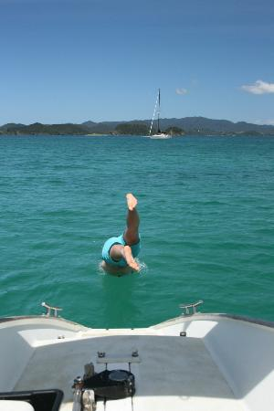 Te Kaihau Yacht Charters day trips: Spot of swimming in the shimmering water
