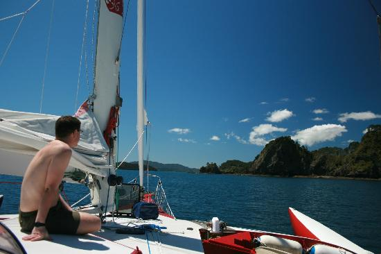 Te Kaihau Yacht Charters day trips: Admiring the views