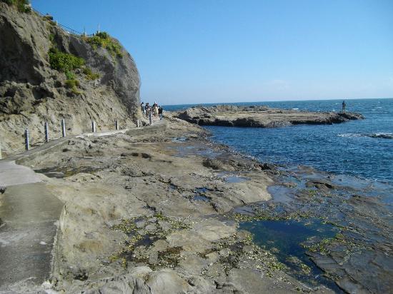 Enoshima Island: Rockpools at the 'back' of the island walk