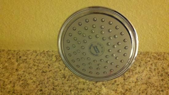 Country Inn & Suites by Radisson, Concord (Kannapolis), NC: Massive Shower Head