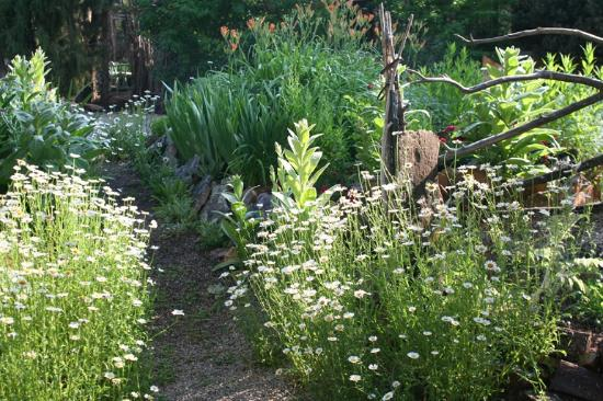 Abode at Willowtail Springs: Garden splendor