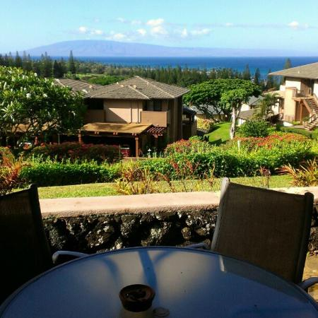 The Kapalua Villas, Maui: view from one of 2 patios