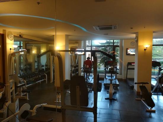 Hyatt Regency Kathmandu: Gym