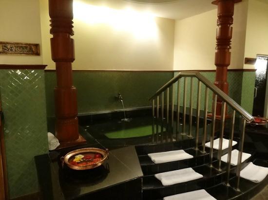 Hyatt Regency Kathmandu: Men's Spa