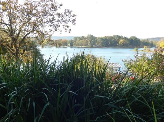 لوكاوت بوينت ليكسايد إن: View of Lake Hamilton 