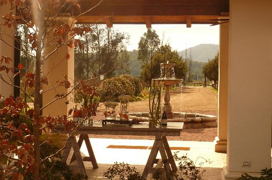 Chile Off Track, Boutique Tour Company Santiago,Viña Casas del Bosque