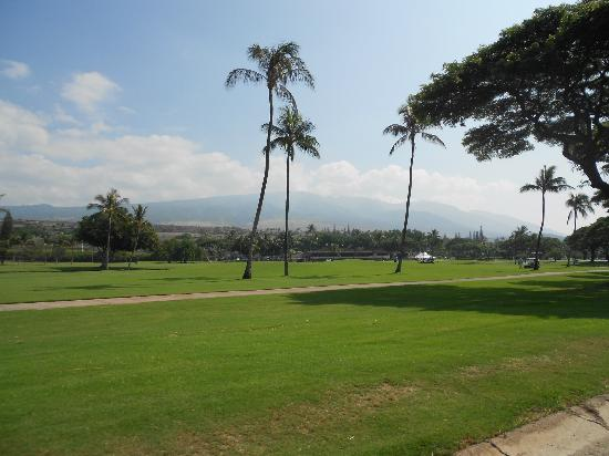 Westin Maui Resort And Spa: Golf course next to the hotel.