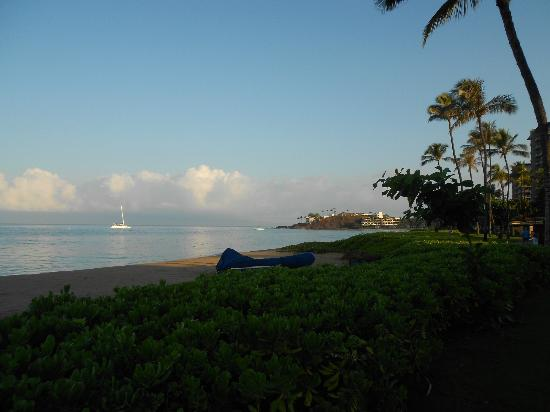 Westin Maui Resort And Spa: Beach view.