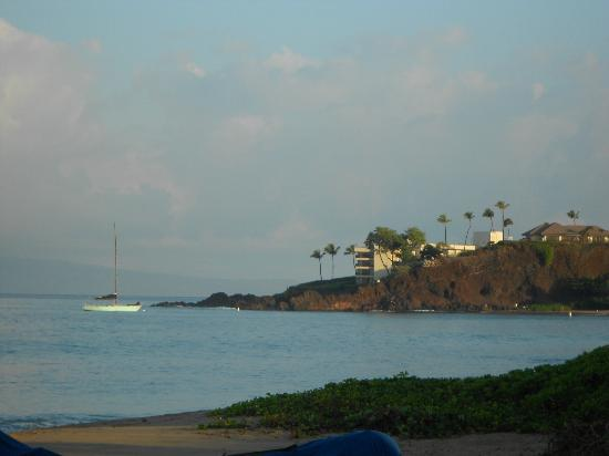 The Westin Maui Resort & Spa: Black rock, diving spot.