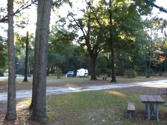 White Springs, FL: Spaces are wide and shady.
