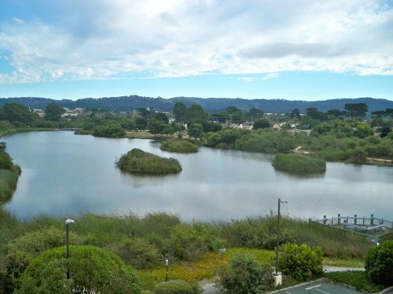 Holiday Inn Express @ Monterey Bay: view from the 5th floor/ pond and wilderness