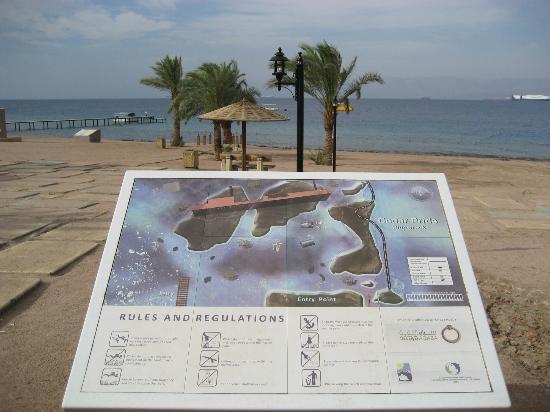 Arab Divers: Strand bij Cedar Pride