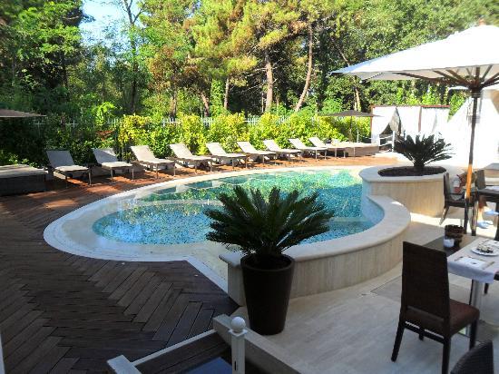 Stella della Versilia: Vista dal ristorante della piscina