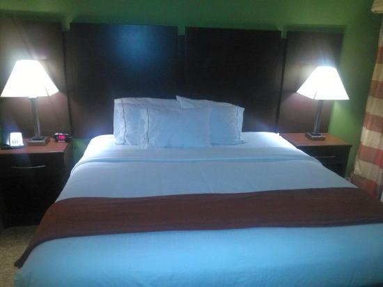 Holiday Inn Express & Suites Bonifay : 326 king smoking