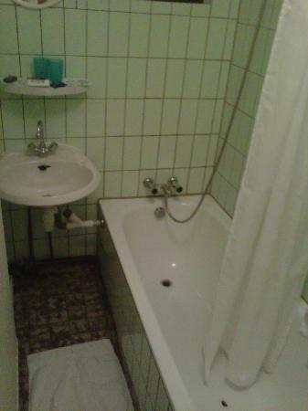 Het Roode Hert: bagno d'altri tempi: mai rinnovato con vasca scheggiata