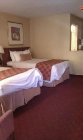 BEST WESTERN PLUS Anaheim Inn: 2 beds in adjoing room