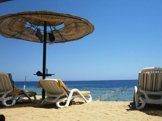 Continental Garden Reef Resort: Spiaggia privata