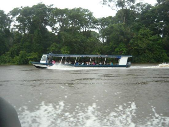 Pachira Lodge: Embarcaciones