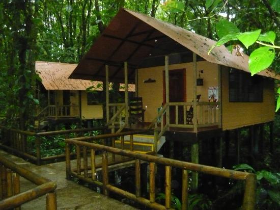 Pachira Lodge: Bungalows