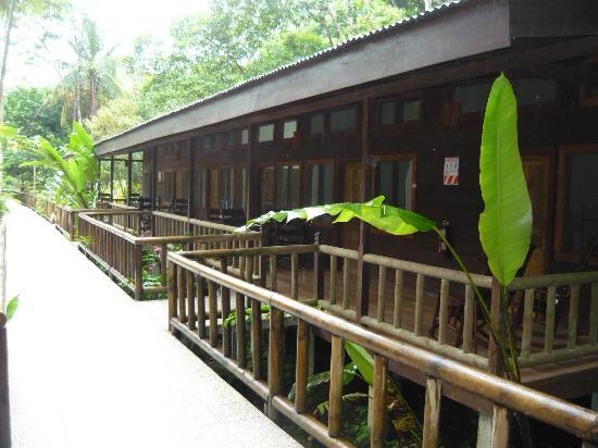 Pachira Lodge: Habitaciones Evergreen