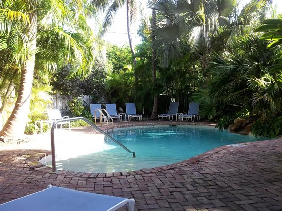 Angelina Guest House:                   lovely pool area