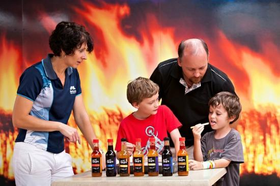 Sarina Sugar Shed: Enjoy a great day out for the entire family, learn about the Sugar Industry.