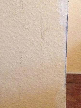 """Hotel Bruy Formula & Domicil: walls look """"great"""""""
