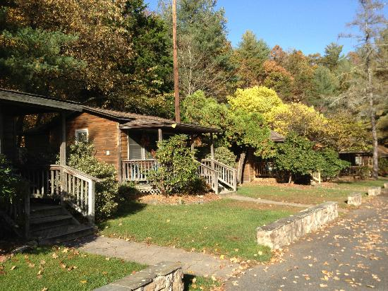 The Cabins at Brookside: more autumn leaves