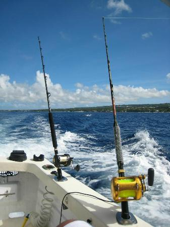 IOU Fishing Charters : Multi-tasking in Barbados ;-)