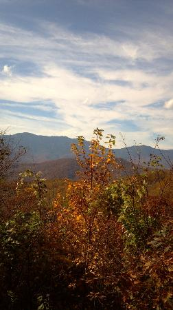 North Carolina Mountains, Carolina del Norte: Black mountain range
