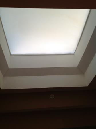 Hydrangea House Inn: Sky light in the bathroom