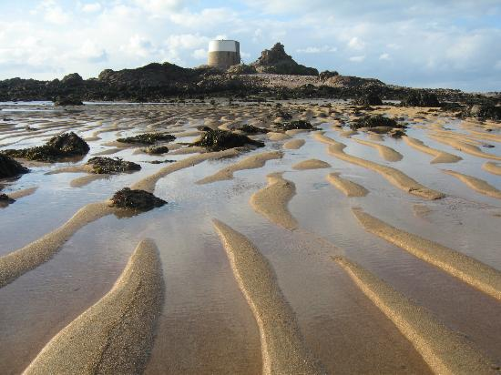 Sand bars at Icho tower. - Picture of Jersey Walk ... Wild Oysters