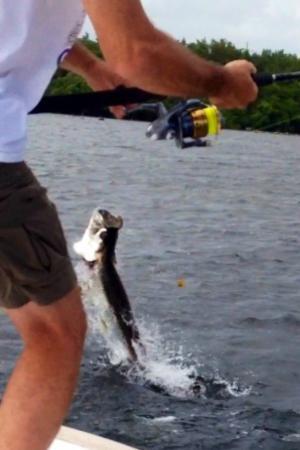 Go Tarpon PR Fishing Charters