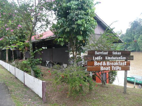 Barefoot Sukau Lodge: The Lodge