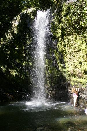 Luquillo Sunrise Beach Inn: El Yunque Juan Diego Falls