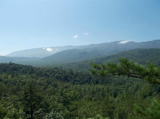 CLIMB Works - Smoky Mountains: view from zip platform