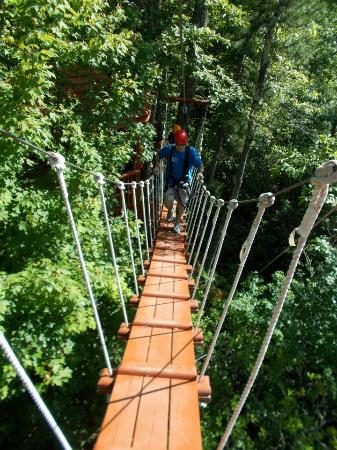 CLIMB Works - Smoky Mountains: one of the bridges to a zip platform