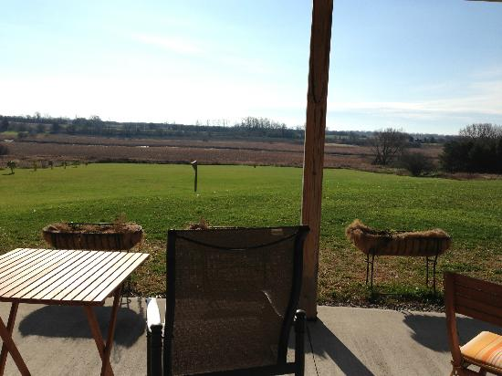 Golden Grape B&B: Great views from the backyard