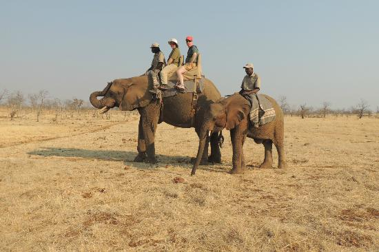 The Elephant Camp: ridign Jackie with her babie in tow